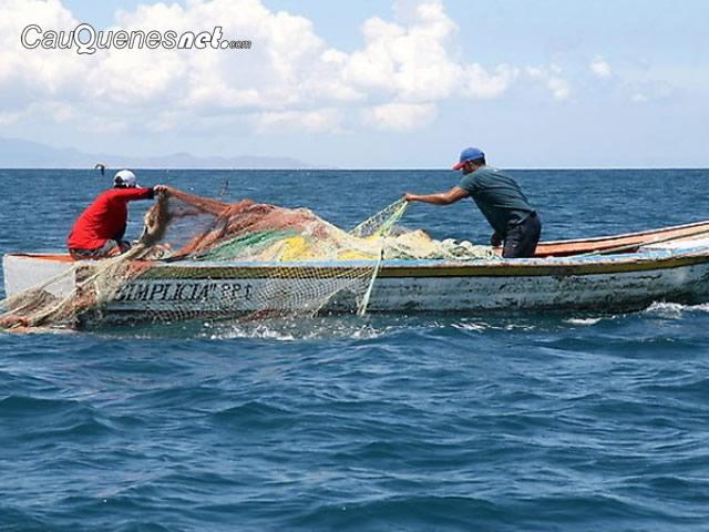 Cámara de Diputados aprobó anulación de Ley de Pesca y Gobierno anuncia que recurrirá al TC