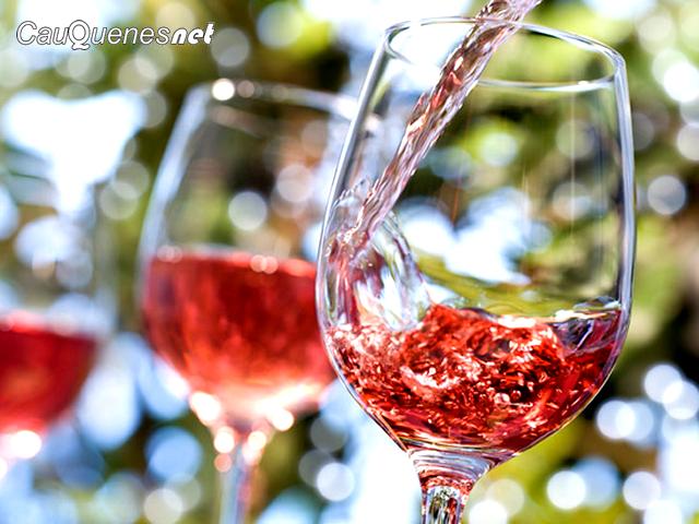 Gremios vitivinícolas de la zona central se reunirán con el Ministro de Agricultura y senadores de la región del Maule