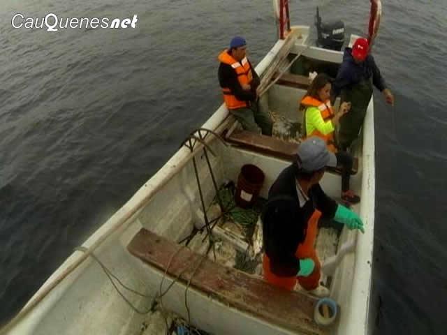 Hasta el 14 de agosto pescadores del Maule podrán optar por fondos concursables por $400 millones
