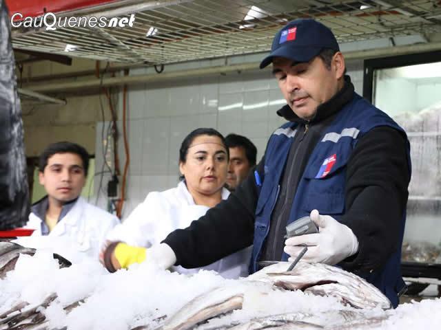 fiscalizacion pescados y mariscos 2017 maule 02-cqnet