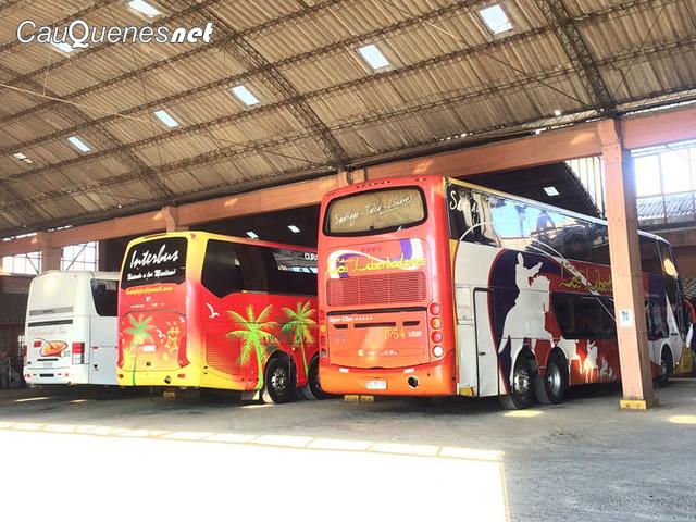 Terminal de buses cauquenes 02-cqnet