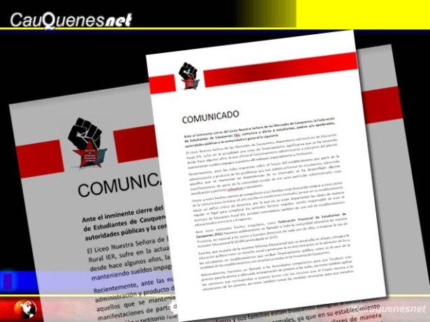 comunicado federación estudiantes cauquenes 01-cqnet