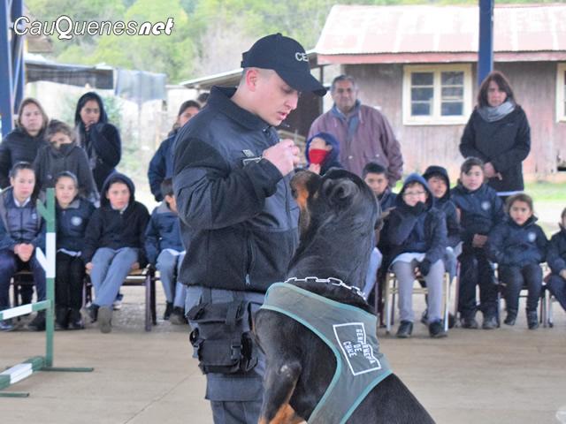 Instructores de Equipos de Canes Adiestrados de Gendarmería, se capacitaron en enfermería canina