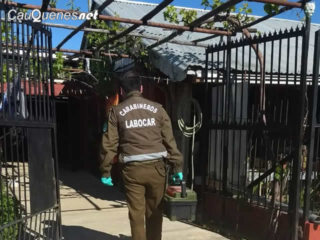 Carabineros investiga muerte de anciano en cauquenes 13oct17 01-cqnet