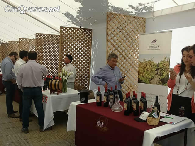 Fiesta vino pais 2017 cauquenes 01-cqnet
