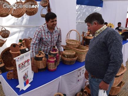 Feria Fosis maule 02-cqnet