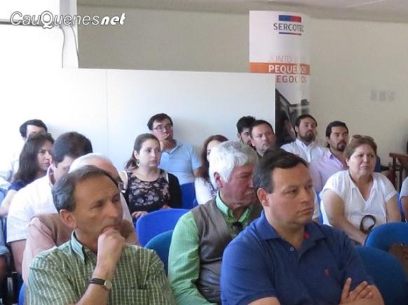 Centro desarrollo negocios cauquenes CPublica 03-cqnet