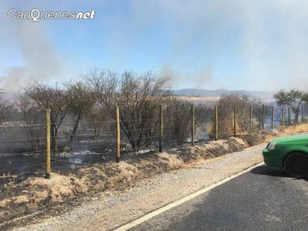 incendio pastizal difunta correa 04-cqnet