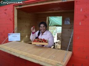 Frutilleros Pelluhue equipan locales 01-cqcl
