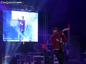 Gotay Festival del Río 2018 02-cqcl