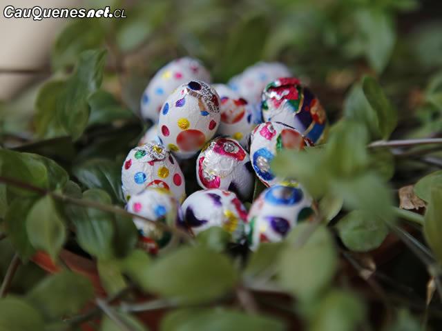 Niños deben comer máximo 5 huevos de chocolate 01-cqcl
