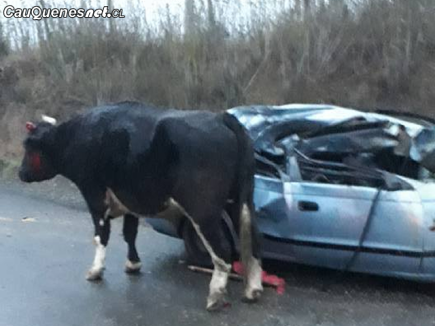 Accidente camino chanco constitucion choque a carretela 090518 01-cqcl