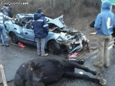 Accidente camino chanco constitucion choque a carretela 090518 02-cqcl