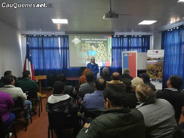"""Cauquenes: Gobierno hace llamado a postular al Programa """"Más Leña Seca 2018"""""""