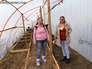 Invernadero CCP Cauquenes 01-cqcl