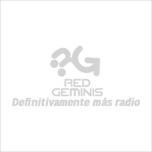 Red geminis gris 01