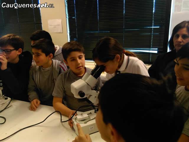 Escolares de Cauquenes aprenden sobre entomología en laboratorios UTalca