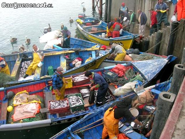 Pesca Artesanal 01-cqcl.png