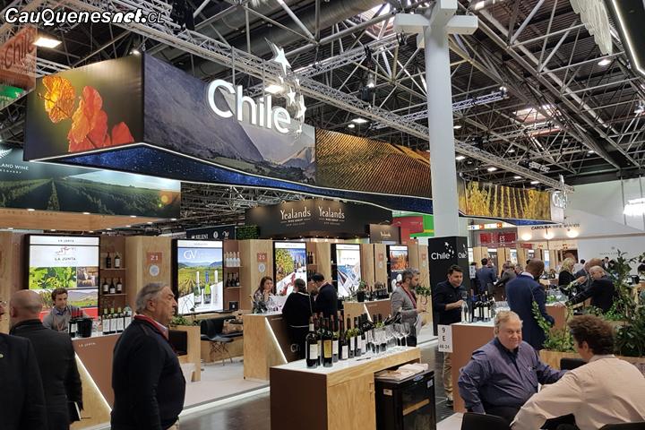 Vino de Cauquenes fue reconocido como uno de los mejores de Chile según el Master of Wines Tim Atkins