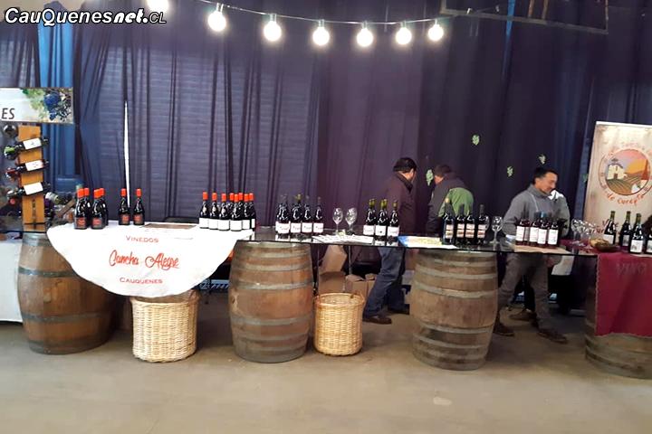 Viñateros de Cauquenes estuvieron presentes en la Fiesta del Vino y el Navegao en Linares