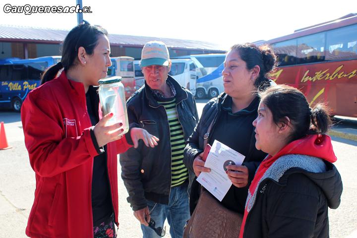 Salud refuerza campaña de Hantavirus en el Maule en estas fiestas patrias
