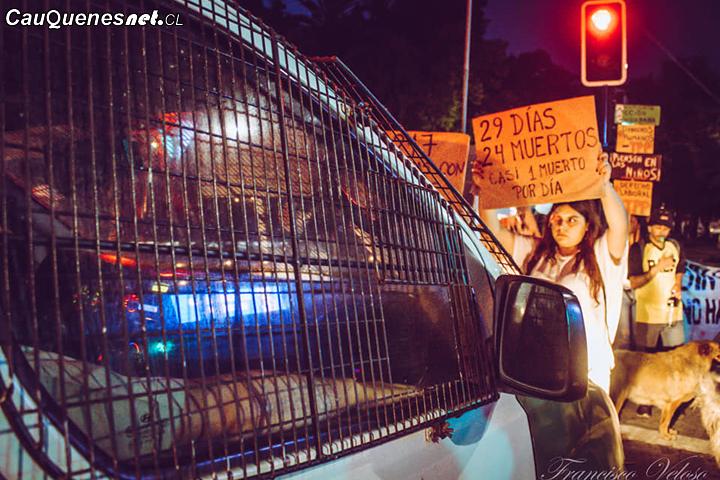 Cauquenes tuvo nueva jornada de manifestaciones