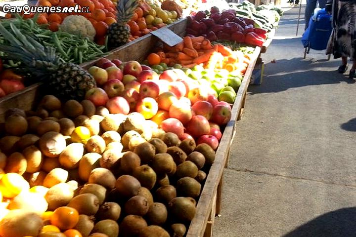 Feria Libre se realizazará en Cancha Retulemu