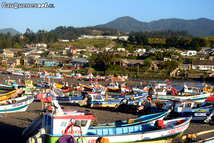 Organizaciones de pescadores artesanales podrán optar a fondo para cubrir gastos básicos y operacionales