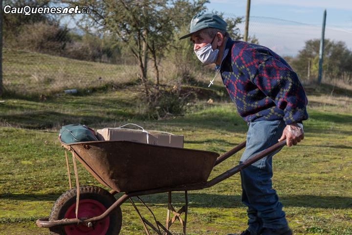 Municipio de Cauquenes repartió cajas de alimentos en sectores rurales de la comuna
