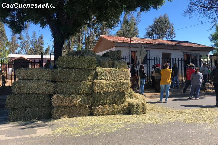 Entregan más de 600 fardos en sectores rurales de Cauquenes