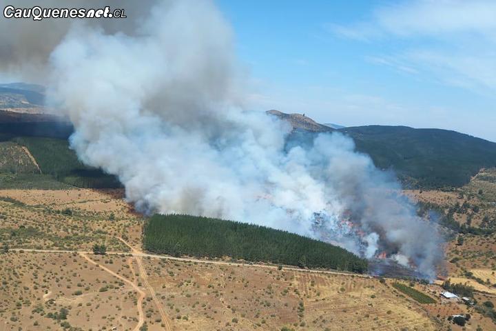 En #Cauquenes formalizan a operario de vialidad como autor de incendio forestal