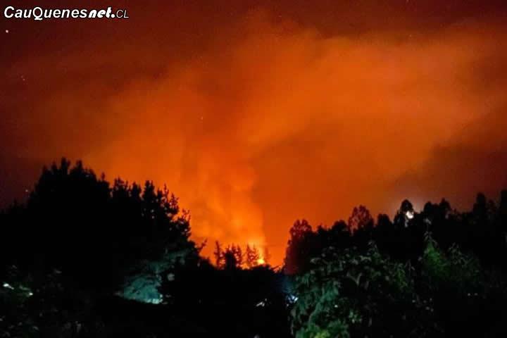 #URGENTE: Incendio nocturno afecta a aserradero en la comuna de #Chanco