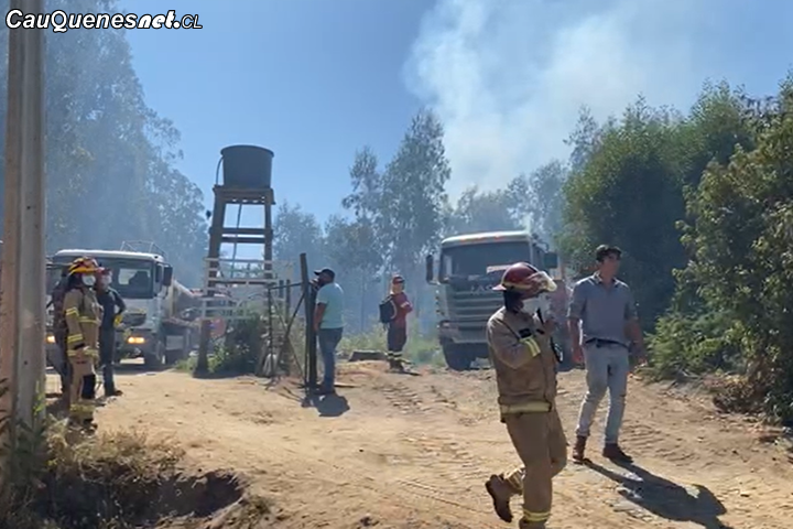 incendio Forestal en sector los Médanos en #Chanco